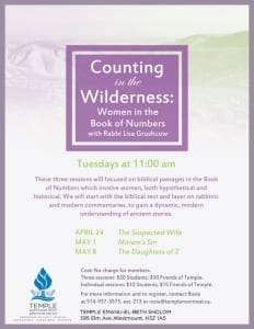 Rabbi Class, Counting in the Wilderness